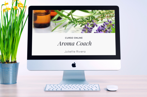 desk aroma coach.jpg