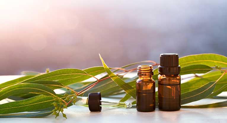 eucalipto oil.jpg