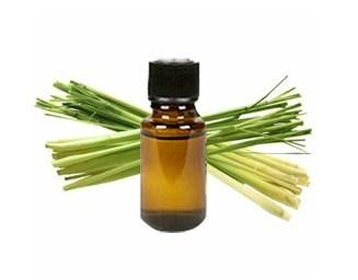 lemongrass eo.jpg