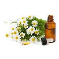 manzanilla oil.jpg