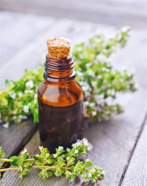 oil thyme.jpg